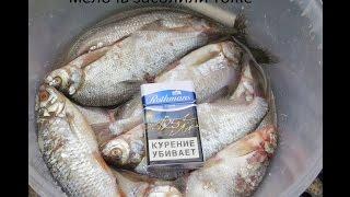 рыбалка Бабинское Озеро , Ненормативная лексика.
