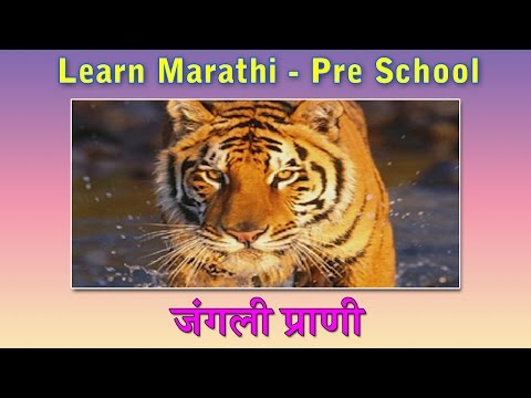 essay on domestic animals in marathi