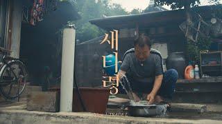 Feel the Rhythm of Korea - Sun…