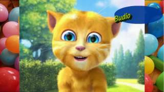 Download lagu Balonku Ada Lima Lagu Anak Indonesia Populer Sepanjang Masa Dinyanyikan Kucing Lucu Gemesin Banget MP3