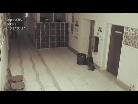 ghosts caught on camera? Deerpark CBS School Ghost in Cork Ireland