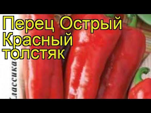 Перец острый Красный толстяк. Краткий обзор, описание характеристик cápsicum ánnuum