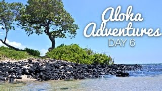 We Found Heaven | Aloha Adventures [day 6]