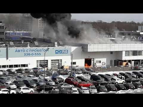 Пожар Спб приморский район Рольф