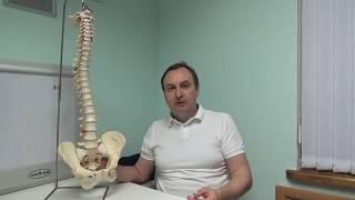 Анатомия боли. Почему болит спина? Видео-школа «Здоровая спина». Урок 1.