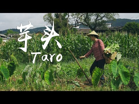 Food material for various cooking ways-How would you like to eat taro?