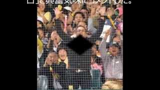 ニュース、エンタメ、面白ネタ 大の虎党として知られる俳優の渡辺謙(5...