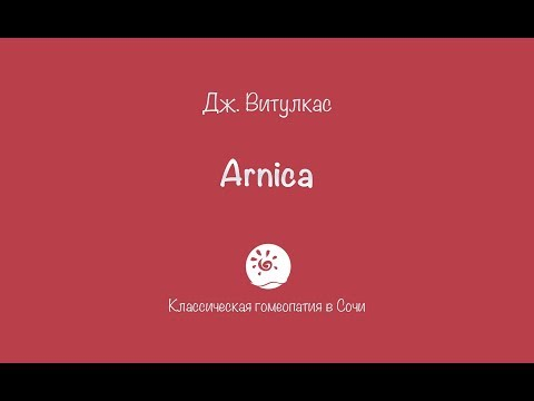 Программа для салона красоты «Арника». Запись клиентов