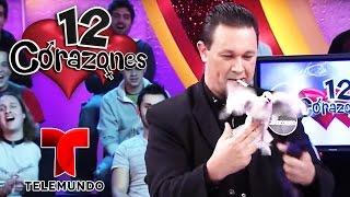 12 Hearts💕: Magicians Special!   Full Episode   Telemundo English