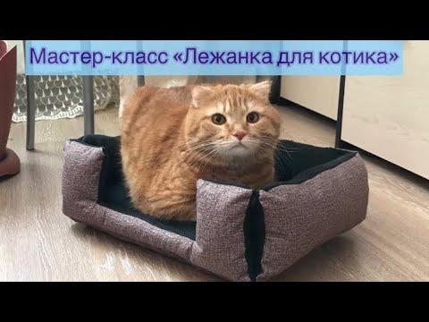 Лежанка для кошки своими руками выкройка мастер класс