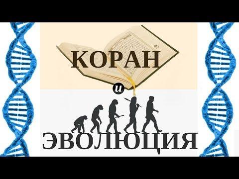 Коран и теория