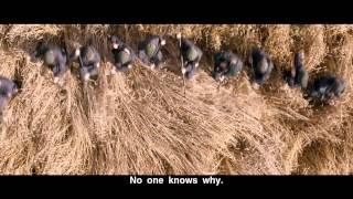 Тишина трейлер. Смотреть онлайн полный фильм можно на kinocox.net