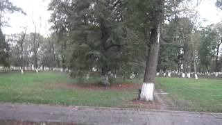 Продолжение осени в Беларуси