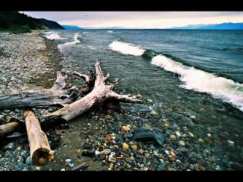 Sokolov - Bach-Brahms Chaconne For The Left Hand Alone.wmv