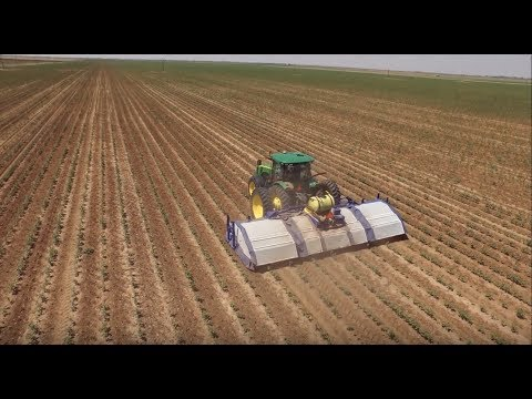 Artificial Intelligence: Smart Machines for Weed Control and Beyond