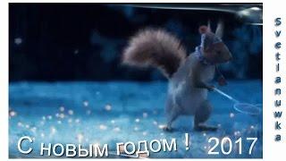 ПОЗДРАВЛЕНИЕ ОТ БелочкИ С НОВЫМ 2017 ГОДОМ !