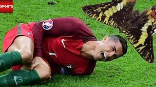 THE RONALDO MOTH BROKE THE INTERNET | Euro 2016 Best Memes & Tweets