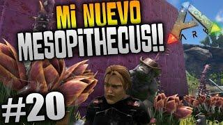 ARK SURVIVAL EVOLVED #20 | TAMEANDO AL MESOPITHECUS!!! MINI MONO DE BOLSILLO!! | XxStratusxX