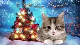 Поздравление С Новым Годом от кошки #1