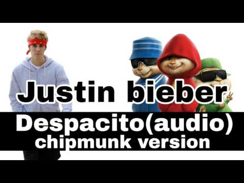 Justin bieber remix despacito ( chipmunk version )