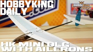 HK Mini DLG with Ailerons