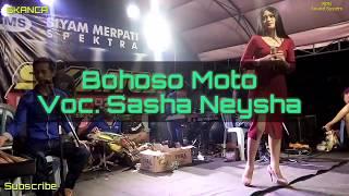 Bohoso Moto Voc. Sasha Neyshaa