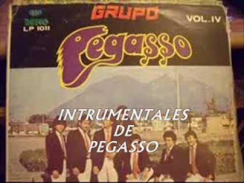 INSTRUMENTALES  PEGASSO