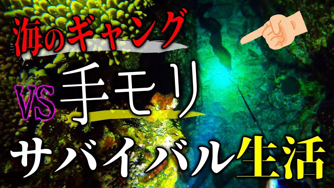 海のギャングに貧弱モリで立ち向かうプロ魚突き師【素潜りサバイバル #5話】