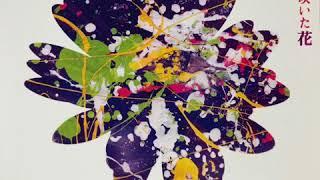 坂本サトル - 夜空に咲いた花