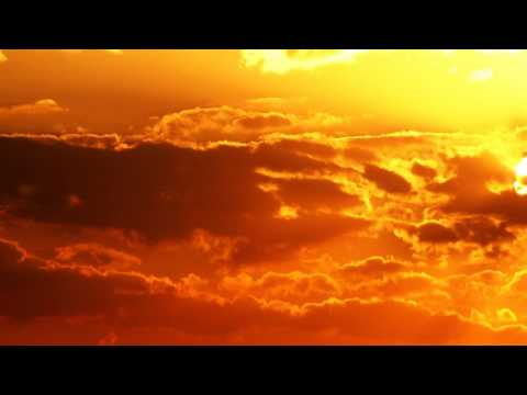 Gold Skies [Elephante Skies] [Sander van Doorn, Martin Garrix, DVBBS ft.(Aleesia) 1 Hour