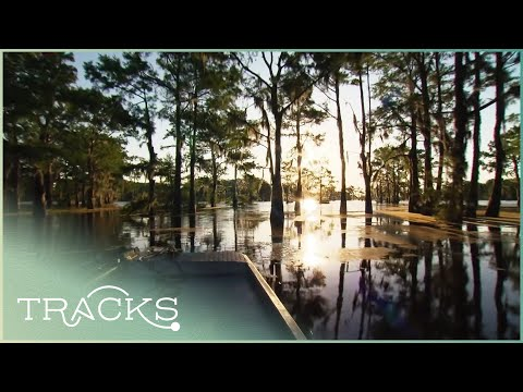 Along the Mississippi: The Deep South (Part 1 – Full Documentary)   TRACKS
