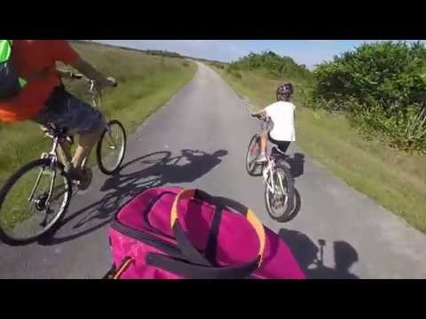 Shark Valley Everglades National Park Cycling Trip Alligators and Wildlife