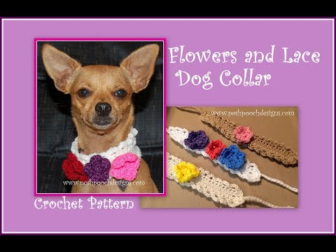 Flowers And Lace Dog Collar Crochet Pattern