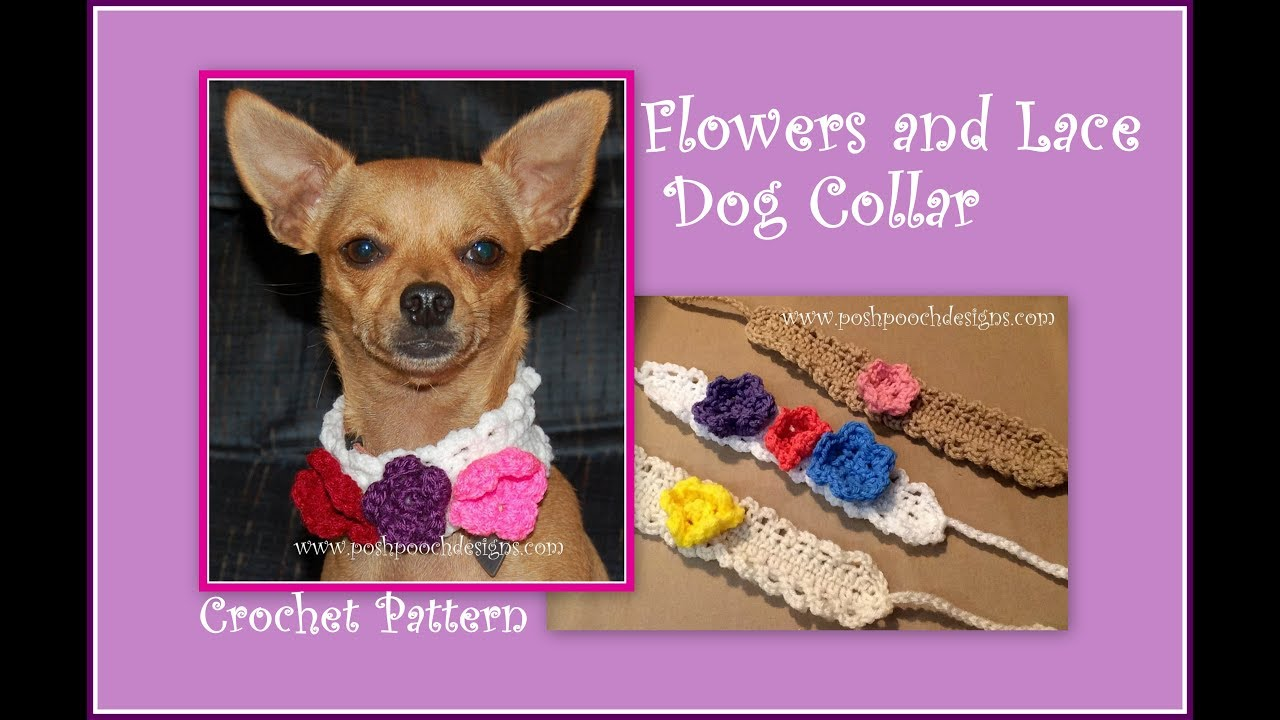 Flowers And Lace Dog Collar Crochet Pattern Youtube