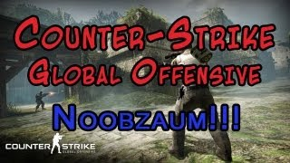 Counter-Strike: Global Offensive - Noobzaum!!!