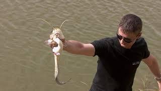 Рыбалка на реке Урал, Казахстан, 2017г