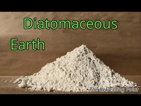 The Dirt on Diatomaceous Earth -  The Bug Eliminator You Can Eat!
