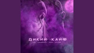 Download Дикий кайф Mp3 and Videos