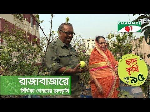 Rooftop farming   EPISODE 95   HD   Shykh Seraj   Channel i   Roof Gardening   ছাদকৃষি  