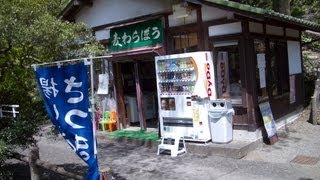 五竜の滝 中央公園 の風景 黄瀬川 静岡県裾野市