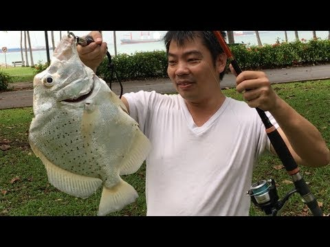 Productive fishing @ ECP Carpark D5 Breakwater [+ Camping + Cooking]