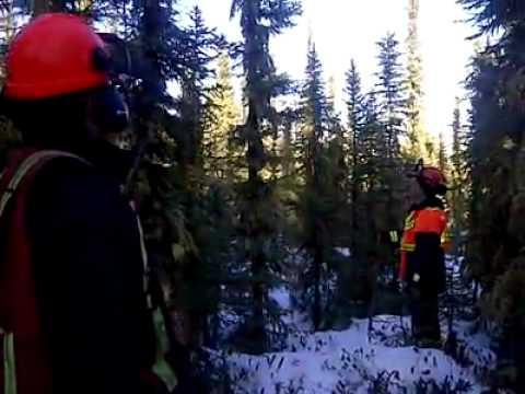 Strange sounds in Conklin, Alberta Jan. 12/2012