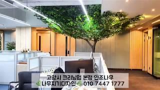 인조나무인테리어, 인조느티나무! 크리닝업본사 실내조경 …