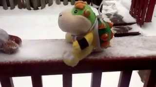 NN1121 movie Bowser jr
