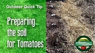 Preparing the soil for Tomatoes - Quick Tip