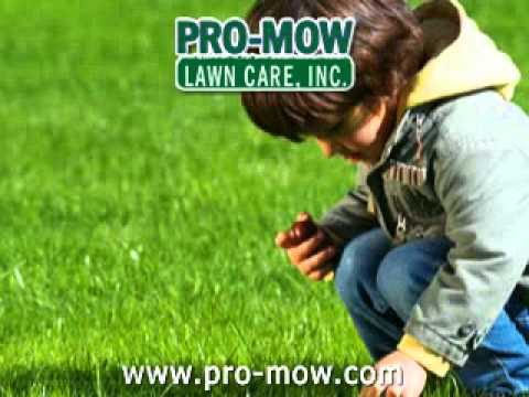 Pro-Mow Lawn Care, Inc - Charleston and Mattoon, IL