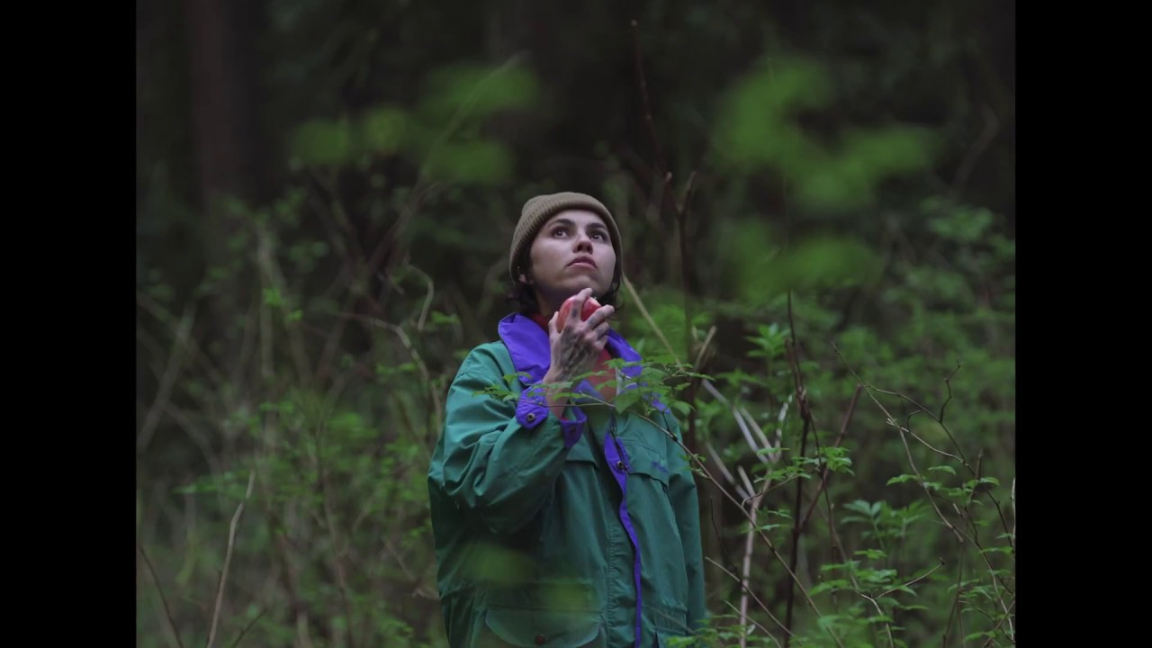 лес фильм 2017