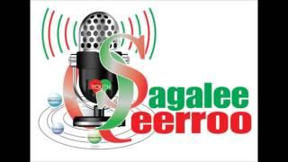 Sagalee Qeerroo Bilisummaa Oromoo (SQ) Amajjii 2, 2016