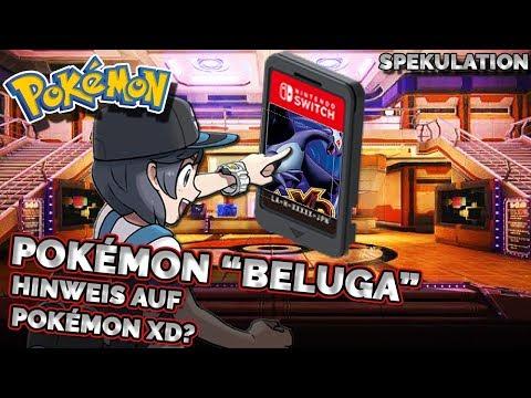 Ist der Codename Beluga ein Hinweis für ein Remake von Pokemon XD?