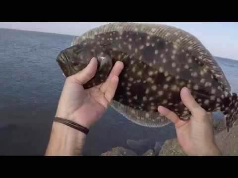 FOLLY AND SULLIVANS SC JETTY FISHING FLOUNDER AND REDFISH